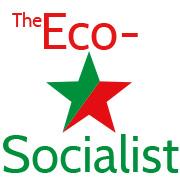 ecosocialist badge